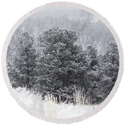 Snowy Pines In The Pike National Forest Round Beach Towel