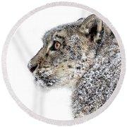 Snowy Snow Leopard Round Beach Towel
