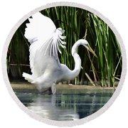 Snowy White Egret In The Wetlands Round Beach Towel
