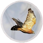 Soaring Hawk Round Beach Towel