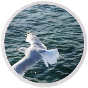 Soaring Waters Round Beach Towel