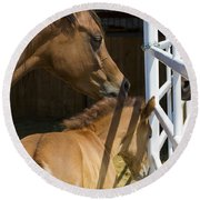 Socializing Amongst Horses Round Beach Towel