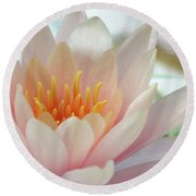 Soft And Delicate Water Lily Round Beach Towel