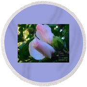 Soft And Gentle Rose Of Sharon Round Beach Towel