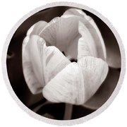 Soft And Sepia Tulip Round Beach Towel