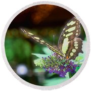 Soft Butterfly Round Beach Towel