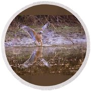 Soft Landing On The Pond Round Beach Towel