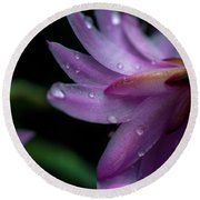 Soft Macro Of Purple Flower Round Beach Towel