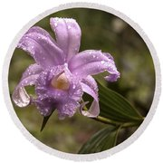 Soft Pink One-day Orchid With Droplets Of Dew Round Beach Towel