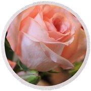 Soft Pink Rose Round Beach Towel