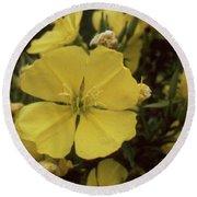 Soft Yellow Flowers Round Beach Towel