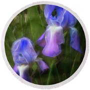 Softly Growing In The Garden Round Beach Towel