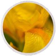 Softly Yellow Round Beach Towel