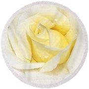 Softly Yellow Rose Round Beach Towel