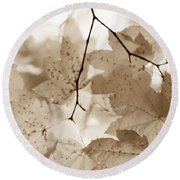Softness Of Brown Maple Leaves Round Beach Towel