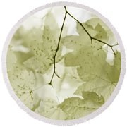 Softness Of Olive Green Maple Leaves Round Beach Towel