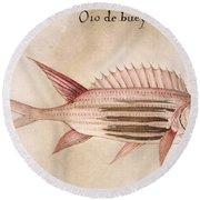 Soldier-fish, 1585 Round Beach Towel