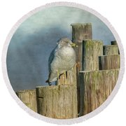 Solitary Gull Round Beach Towel