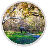 Solitude Under The Sycamore Round Beach Towel