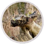 Something About A Dragon. Round Beach Towel