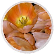 Somewhat Peachy Round Beach Towel