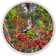 Song Of The Anhinga Round Beach Towel