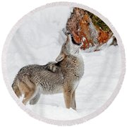 Song Of The Wild Round Beach Towel