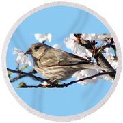 Song Sparrow Dining Out Round Beach Towel