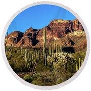Sonoran Cacti Everywhere Round Beach Towel
