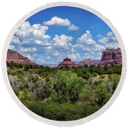 Sonoran Countryside Round Beach Towel