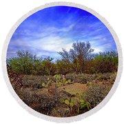 Sonoran Desert H1819 Round Beach Towel