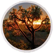 Sonoran Desert Sunrise 2 Round Beach Towel