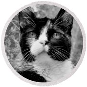 Souls Great And Small Round Beach Towel