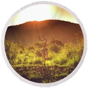 South Africa At Its Finest  Round Beach Towel