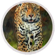 South American Jaguar Round Beach Towel