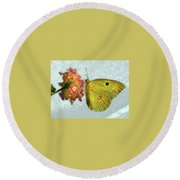 Southern Dogface Butterfly Feasting On December Lantanas Austin V2 Round Beach Towel