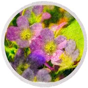 Southern Missouri Wildflowers 1 - Digital Paint 2 Round Beach Towel