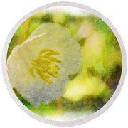 Southern Missouri Wildflowers - Mayapples Bloom - Digital Paint 2 Round Beach Towel