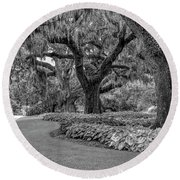 Southern Oaks In Black And White Round Beach Towel