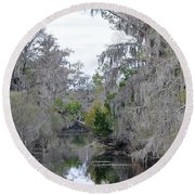 Southern Swamp Round Beach Towel