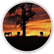 Southwestern Sunrise Color, Silhouetted Oak Tree And Three Horses Round Beach Towel