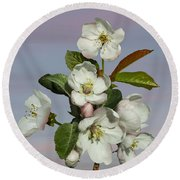 Spade's Apple Blossoms Round Beach Towel