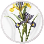 Spanish Iris Round Beach Towel