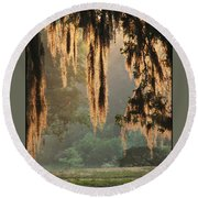 Spanish Moss In The Morning Round Beach Towel