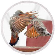 Sparring Flickers Round Beach Towel