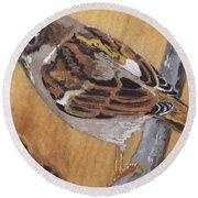 Sparrow 1 Round Beach Towel
