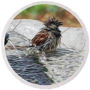 Sparrow Bath Time 9242 Round Beach Towel