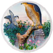 Sparrow Hawk Antique Bird Print Joseph Wolf Birds Of Great Britain  Round Beach Towel