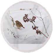 Sparrow In The Winter Snow Round Beach Towel
