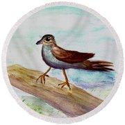 Sparrow On A Branch Round Beach Towel